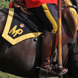 Photograph of RCMP Musical Ride member and horse